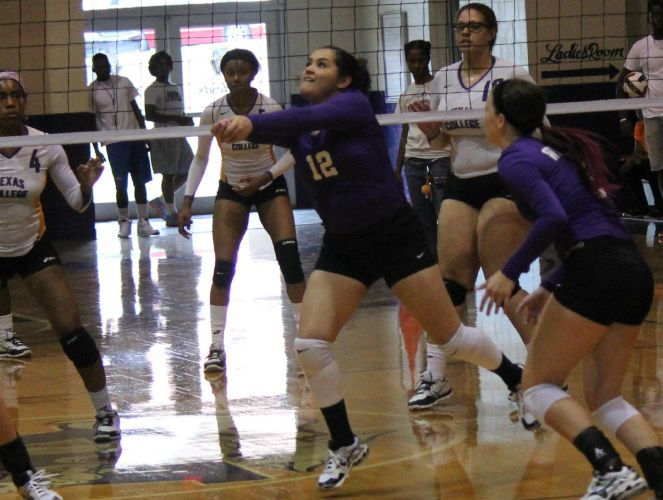 Jessica Izquierdo (#12) has delivered a conference-leading 272 assists for the Lady Wildcats this season.